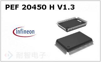 PEF 20450 H V1.3