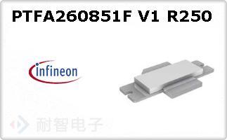 PTFA260851F V1 R250