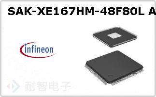 SAK-XE167HM-48F80L A
